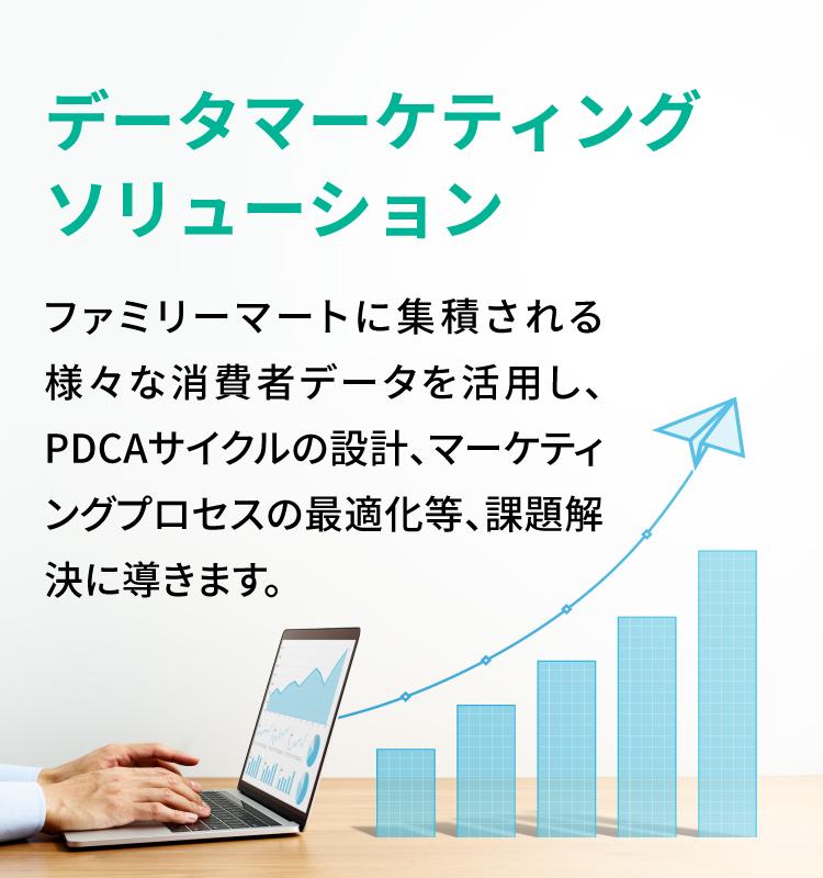 データマーケティングソリューション
